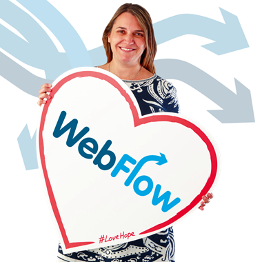 Webflow Online Authorisation Solution